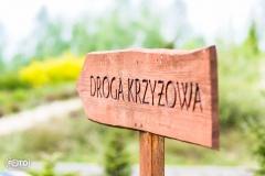 droga-krzyzowa-przeprosna-gorka-0-02